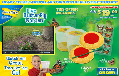 how much does live butterfly garden cost - Live Butterfly Garden